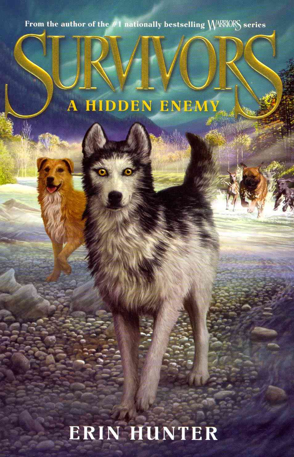 A Hidden Enemy By Hunter, Erin